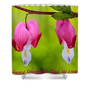 Two Hearts Valentine's Day Shower Curtain