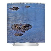 Two Hunting Shower Curtain