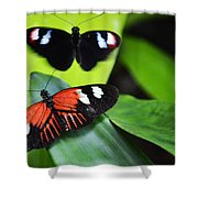 Two In The Leaves Shower Curtain