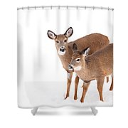 Two In The Snow Shower Curtain