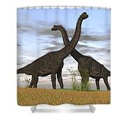 Two Large Brachiosaurus In Prehistoric Shower Curtain by Kostyantyn Ivanyshen