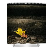 Two Leaves On A Staircase Shower Curtain