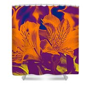 Two Lilies Gradient Shower Curtain