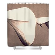 Two Lilies In Sepia Shower Curtain