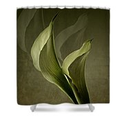 Two Lilly Fantasy Shower Curtain