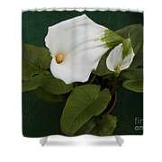 Two Lovely Lilies Shower Curtain