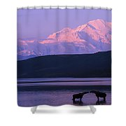 Two Moose Kiss In Wonder Lake Shower Curtain