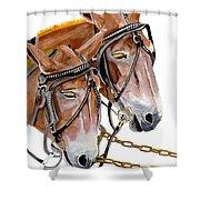 Two Mules - Enhanced Color - Farmer's Friend Shower Curtain