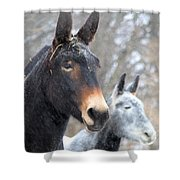 Two Mules For Sister Sara Shower Curtain