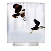Two Of A Different Kind V2 Shower Curtain