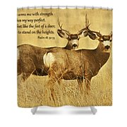Two Of A Kind Shower Curtain
