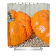 Two Orange Pumpkins Shower Curtain