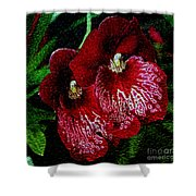 Two Orchids Shower Curtain by Elizabeth Winter