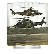 Two Shower Curtain