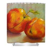 Two Peaches Shower Curtain
