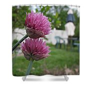 Two Pink Chives Shower Curtain