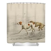 Two Pointers Shower Curtain