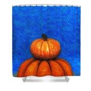 Two Pumpkins Shower Curtain