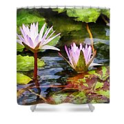 Two Purple Water Lotus Shower Curtain