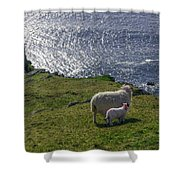Two Sheep On The Cliffs At Sleive League - Donegal Ireland Shower Curtain