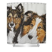 Two Shelties Shower Curtain