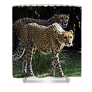 Two Sisters Hunting Shower Curtain