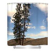 Two Tall Pines Shower Curtain