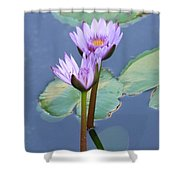 Two Tall Water Lilies Shower Curtain