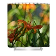 Two Tiger Lillies...   # Shower Curtain
