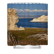 Two Tofa's Shower Curtain