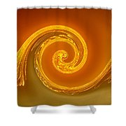 Two-toned Swirl Shower Curtain