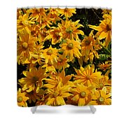 Two Toned Yellow Blooms Shower Curtain