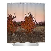 Two Trees At Sunset Shower Curtain