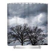 Two Trees Beneath A Dark Cloudy Sky Shower Curtain