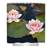 Two Water Lillies Shower Curtain