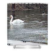 Two Waterfowl Shower Curtain