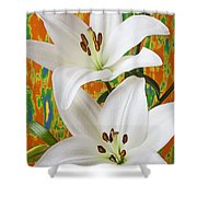 Two White Lilies Shower Curtain