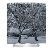 Two Winter Trees Shower Curtain