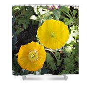 Two Yellow Flowers Shower Curtain