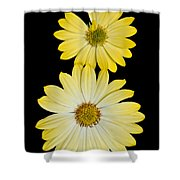Two Yellow Shower Curtain