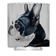 Ty Affair Shower Curtain