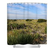 Tybee Island Dunes And Path Shower Curtain