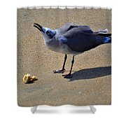 Tybee Seagull Shower Curtain