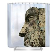 Tyndareus Cracked 1 Shower Curtain