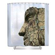 Tyndareus Cracked 1 Shower Curtain