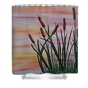 Typha Shower Curtain
