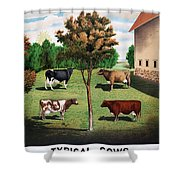 Typical Cows  Shower Curtain