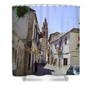 Typical Street In Ecija Spain Shower Curtain