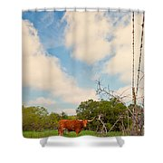 Typically Texas Shower Curtain