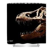Tyrannosaurus Rex Skull 4 Shower Curtain